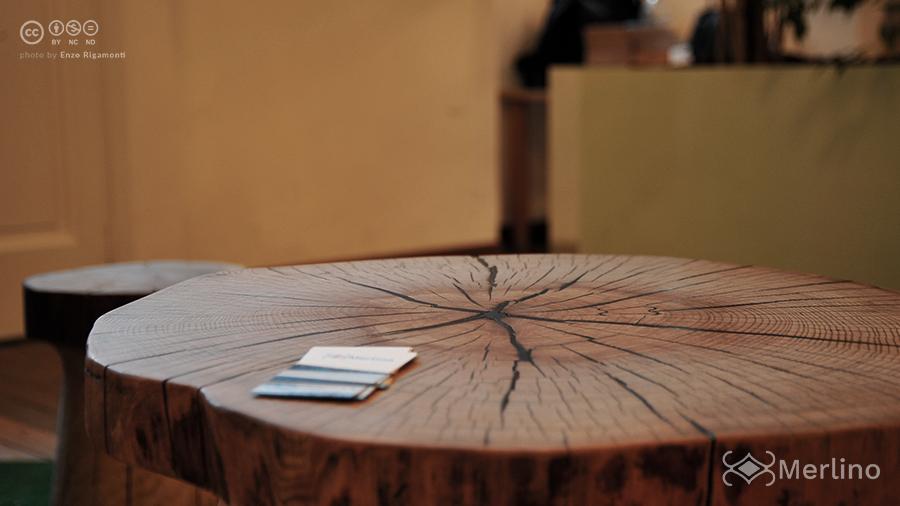 tavolo_sezione_merlino